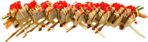 Foto Double Dragon Roll 9 stuks